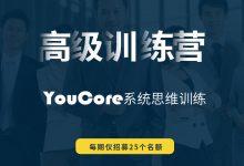 "YouCore系统思维应用:高级训练营,真正从""知道""到""做到"""