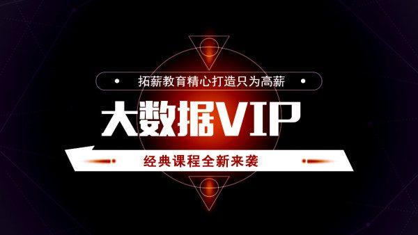 腾讯课堂(拓薪教育):架构师专属之大数据VIP(大数据尊享铂金专业培训课程)