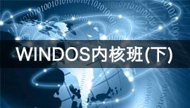 编程达人:火哥Windows内核课程(上+下)视频教程网盘下载(70.4G)
