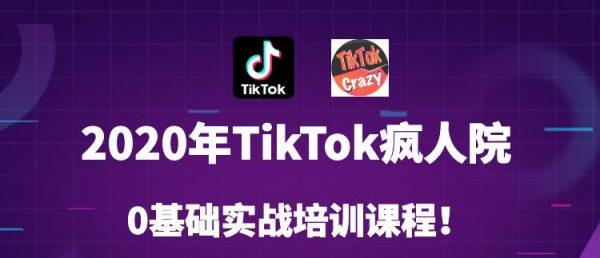 短视频疯人院:2020年最新Tiktok零基础实战训练营第3期