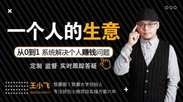 王小飞一个人的生意,38节系统解决个人赚钱课程