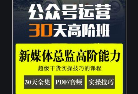 晋升新媒体营销:公众号运营·30天高阶班(完整版下载)