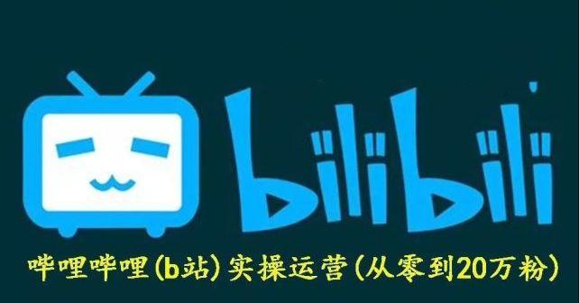 义乌之狼:哔哩实操运营项目,41节b站网赚涨粉教程