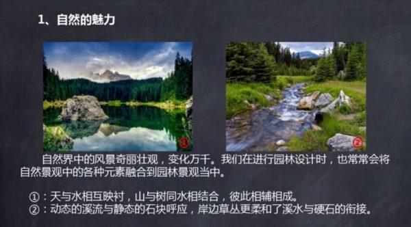 园林景观植物造景从设计到施工实例详解视频截图
